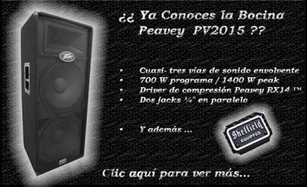 cabecera pv 2015